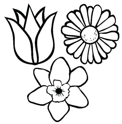 coloring pictures of flowers pictures of flowers coloring pages types of flowers