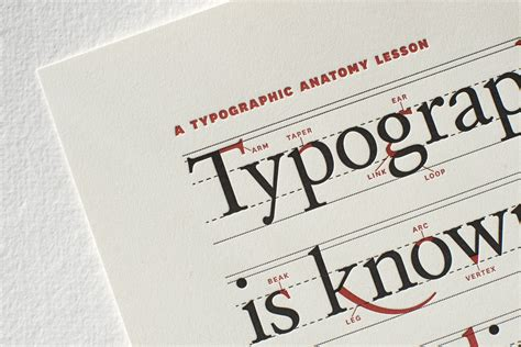 typography print typographic anatomy poster fonts in use
