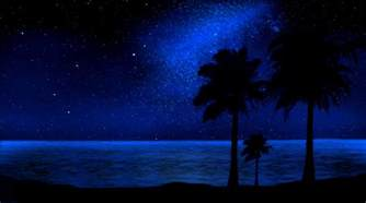 image gallery night beach grafix wall art for decals stickers and prints