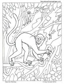 printable color pages animal coloring pages for kids