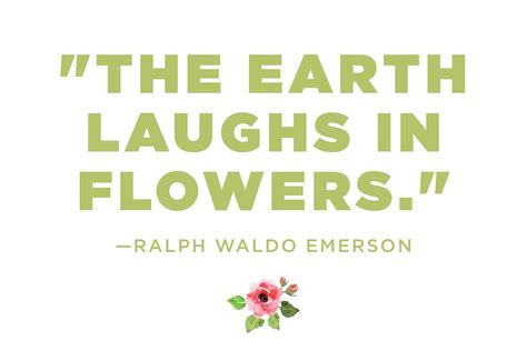 flower garden quotes flower quotes 12 calming thoughts on flowers reader s