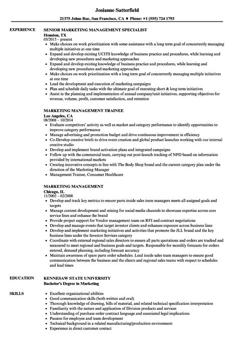 Hertz Management Trainee Cover Letter by Exles Of Resumes For Management Resume Exle And Resume Exles Management