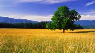 nature wallpapers hd landscape pictures one hd wallpaper