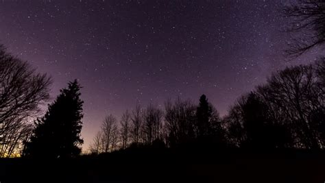 forest night time lapse stock footage video