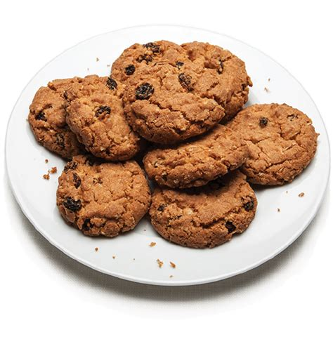Tfa 1 Oz Oatmeal Cookie Flavor Esssence For Diy Liquid Oatmeal Raisin Cookies Goodman