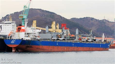 vessel details  pure trader bulk carrier imo