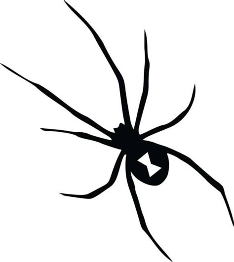 Tokomonster Black Widow 5 Wall Decal Sticker Size 23 black widow spider vinyl decal sticker
