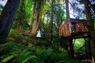 Treehouse In Seattle - rainforest hotel built in the trees tree house point captivatist