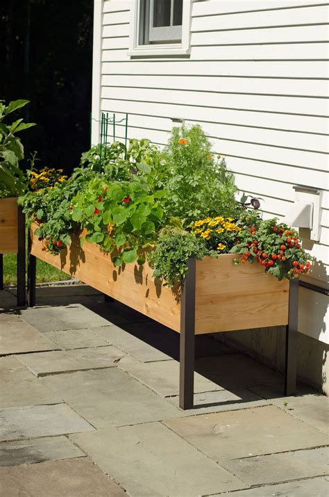 Raised Flower Planters by Best 25 Elevated Planter Box Ideas On Herb