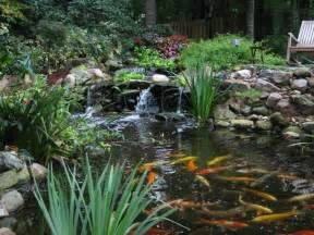 landscaping ideas for koi ponds pdf