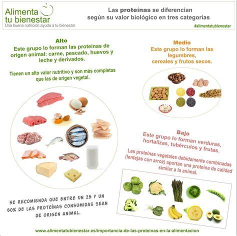 alimentos q tienen proteinas la importancia de las prote 237 nas en la alimentaci 243 n