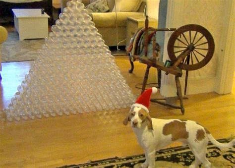 top pet gifts best gift receives 210 bottles for maymo
