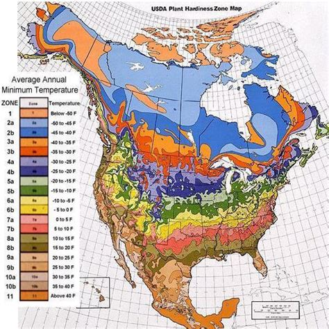 canadian hardiness map plant hardiness zone maps perennial gardening