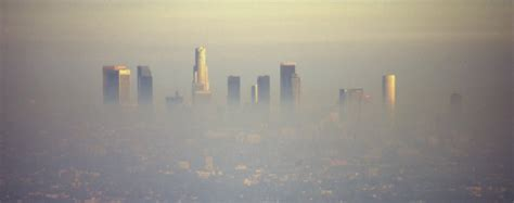 hector tobar  california smog literal  metaphorical