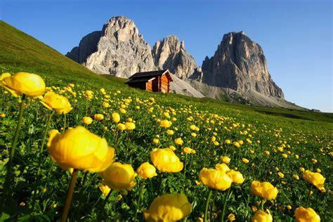 ufficio turistico alpe di siusi guide autorizzate per turismo scolastico sull alpe di siusi