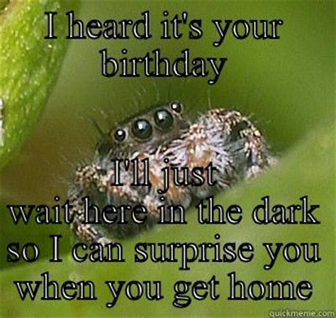 Spider Bro Meme - house spider meme pictures to pin on pinterest pinsdaddy