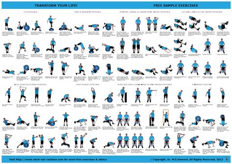 home exercise plan workouts healthy living pinterest exercise at home
