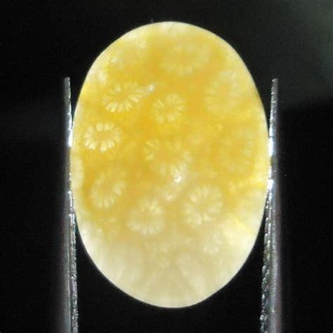 Bm748 Batu Akik Teratai Kuning mustika teratai kuning pusaka dunia