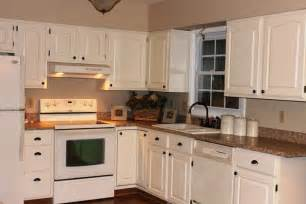 popular cabinet colors most popular kitchen cabinet color