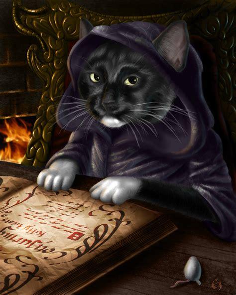wizard cat my cat s a wizard by emortal982 on deviantart