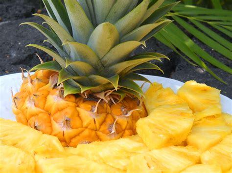 cucinare ananas ricette a base di ananas