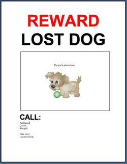 download free lost found dog cat flyer poster 187 adoptapet