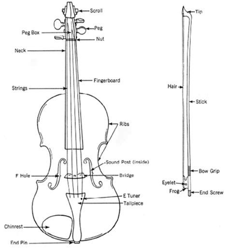labelled diagram of a violin carnatic images of violin parts name