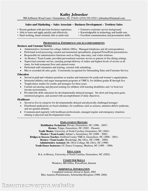 professional resume sales associate