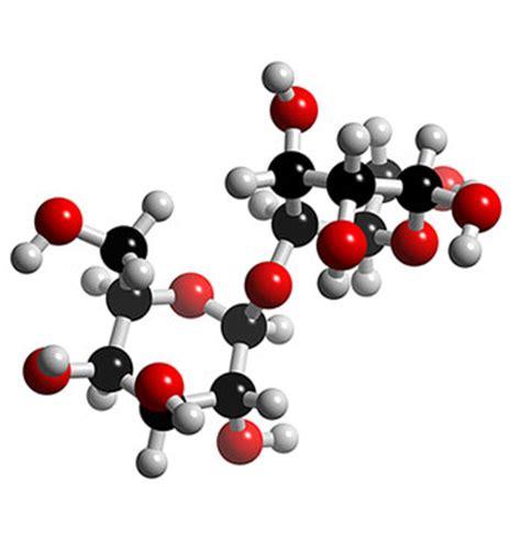 carbohydrates 3d model pre information biological building blocks
