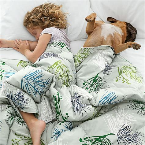 cruelty free down comforter down with down cruelty free bedding alternatives