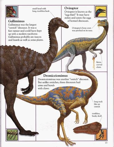 Earth Dk Publishing Ebooke Book Big Book Of Dinosaurs Dinosaur Books For