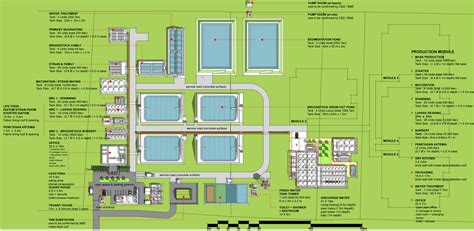 layout of shrimp hatchery spf shrimp hatchery merchong pahang razmanjunus