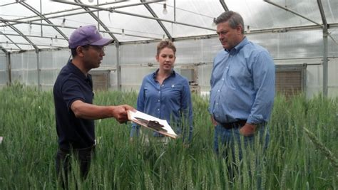 agricultural research center hays adm and k state celebrate continued partnership kansas wheat