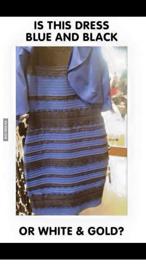 Dress Meme - is this dress blue and black or white gold black or
