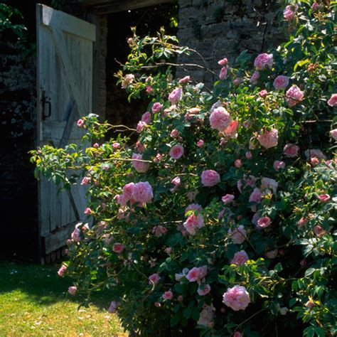 country garden style country garden decorating ideas lovely photograph classic