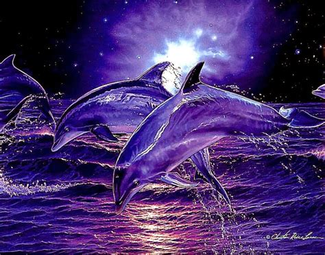 best 3d digital 3d dolphin screensavers wallpaper best free hd wallpaper