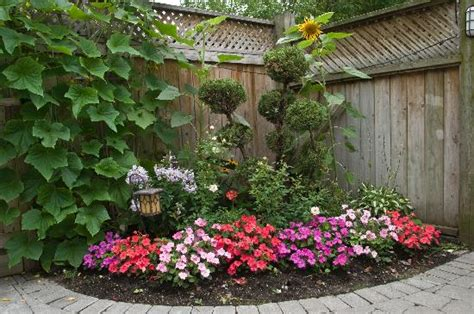 Garden In Backyard by Backyard Garden Picture Of 213 Carlton Toronto Townhouse