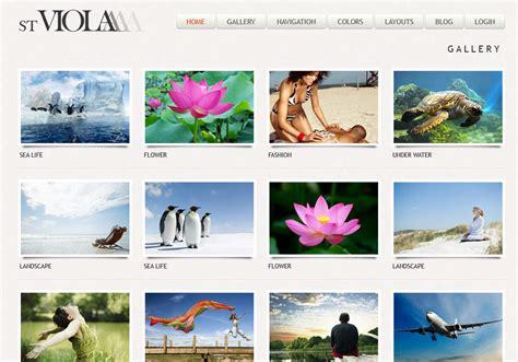 drupal theme art gallery viola drupal photo theme with galleria symphonythemes