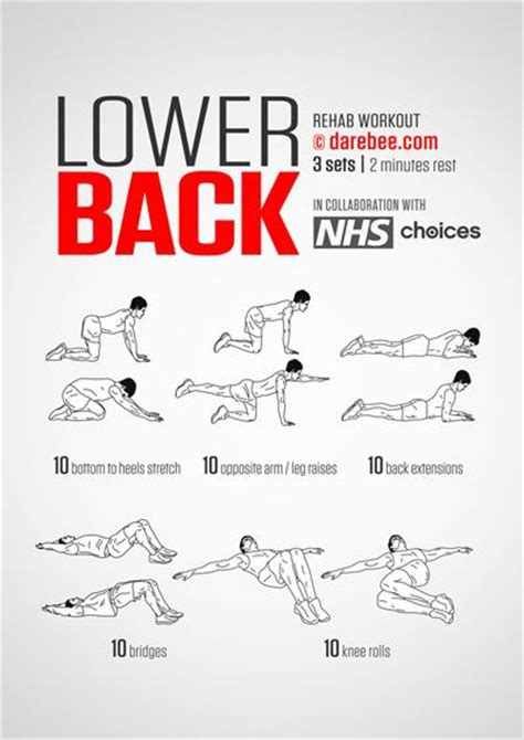 lower back workout chronic lower