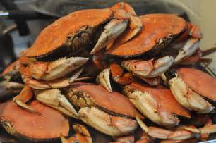 how to cook live crabs apps directories