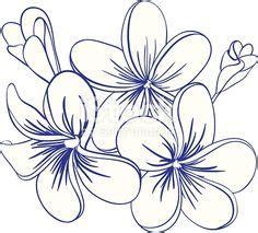 tatuaggi fiori tropicali natura fiori disegni per potenziamento arte immagini