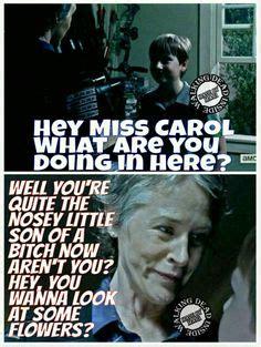 Carol Meme Walking Dead - 1000 images about melissa mcbride carol peletier on