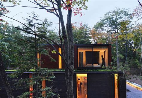 cawah homes modern green blending homes design by gayuh nifty modern house in wisconsin blends in with dense
