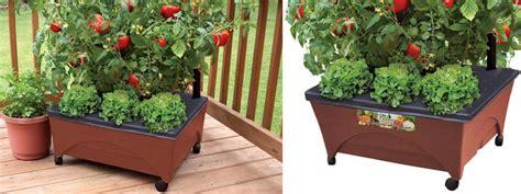 rolling raised garden bed grow box kit