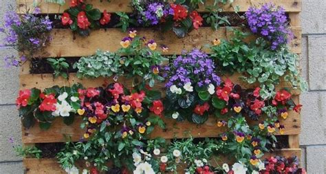 come abbellire un terrazzo come abbellire un giardino progettazione giardini come