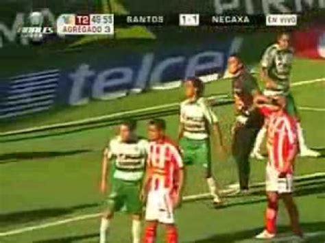 imagenes chistosas futbol fotos chistosas de futbol mexicano imagui