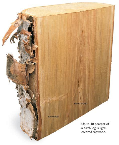 wood works birch popular woodworking magazine