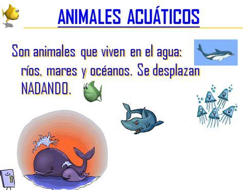 imagenes animales que viven en el agua tipo de animales thinglink