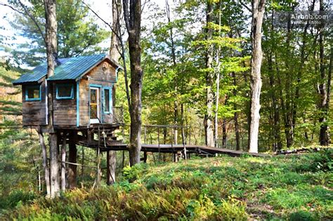 Tiny Fern Forest Treehouse Provides a Cozy Vacation