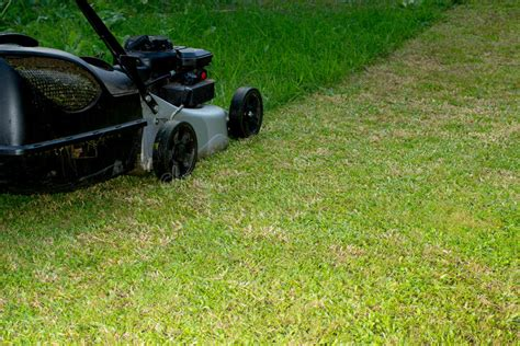 lawn mower work bench lawn mower at work stock photo image 70207654